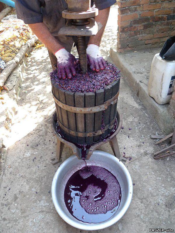 Как сделать виноградное вино в домашних